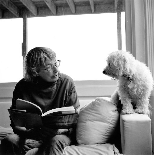 mary oliver best american essays